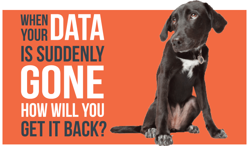 What if the Dog Ate Your Data 1